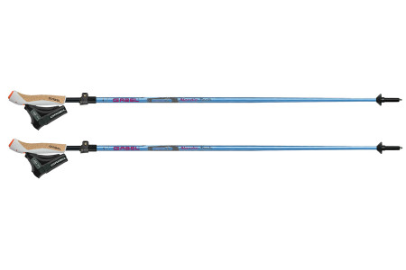 Gabel Nordic Tech FL Carbon 60
